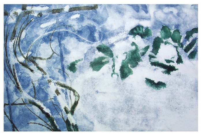 3. Cabbages under            Snow             (25'' x 40'') Etching